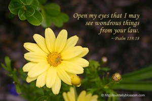 Psalms 119-18_Open my eyes