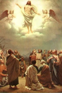 acts 1-11 Jesus-Ascension-into-Heaven